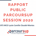 Rapport public Parcoursup session 2020